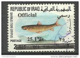 Iraq - 1975 Fish Official Overprint 25f Used  Sc O313 - Iraq