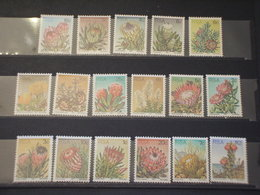 SUD AFRICA/SWA - 1977 FIORI 17 VALORI - NUOVI(++) - Sud Africa (1961-...)