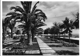 Pietra Ligure (Savona). Giardini. - Savona