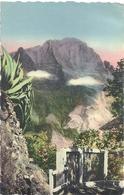 CPSM Cilaos - Réunion Les Chênes Et Le Piton Des Neiges - Reunion