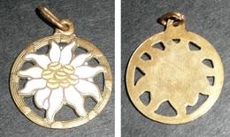Rare Ancien Pendentif En Métal émaillé, Fleur Edelweiss - Pendentifs
