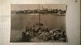Carte Postale / ILE DE BATZ / Embarquement Des Primeurs /Jos - Ile-de-Batz