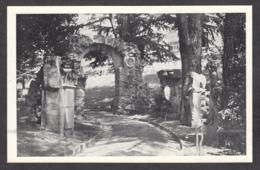 103049/ SAINT-RAPHAEL, Villa *Magali*, Un Coin Du Parc, Quelques Vestiges Des Tuileries - Saint-Raphaël