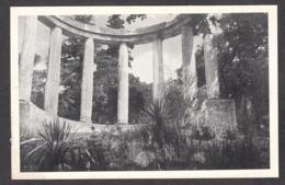 103050/ SAINT-RAPHAEL, Villa *Magali*, Un Coin Du Parc, Quelques Vestiges Des Tuileries - Saint-Raphaël