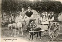 37. CPA. BENAIS.  Charrettes à Chien, Chiens Attelés à Deux Remorques, Femme Et Fillettes. 1926.. - Cani