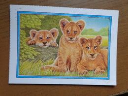 Leeuw, Lion / Artis 150 Jaar -> Written - Löwen