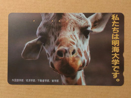 Japan - Giraffe Jpn01 - Japon