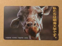 Japan - Giraffe Jpn01 - Giappone