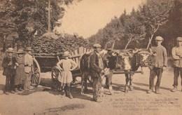 WAIMES -  MONT RIGI - Hautes Fagnes - Waimes - Weismes
