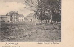 Hautes Fagnes - Hestreux - Hertogenwald - Waimes - Weismes