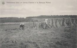 WAIMES - Hautes Fagnes - Baraque Michel - Waimes - Weismes