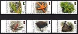 Tristan Da Cunha 2016 R MNH Serie Biodiversity 2 Birds Oiseaux Vogels Vögel Pájaros Ptitsy Pouliá Moth Insects Starfish - Birds