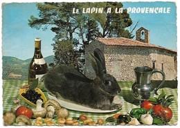 Recette Du Lapin à La Provençale (2 Scans) - Recipes (cooking)