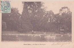 CPA -  PARIS Vécu AU BOIS DE BOULOGNE - Parcs, Jardins