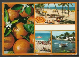 USA Post Card FLORIDA Beach Sent 2000 From Germany With Stamp - Etats-Unis