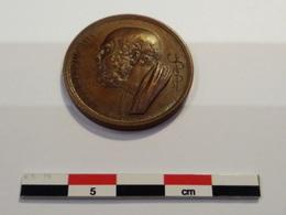 Toulouse Société Médicale 1827 - Bronzes