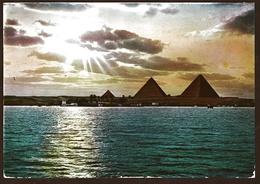 Ägypten  -  Sunset Near Pyramids  -  Ansichtskarte Ca. 1964    (11637) - Pyramiden