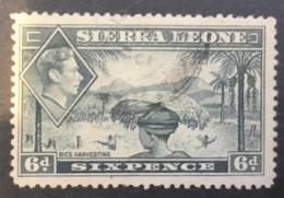 SIERRE LEONE - (0) - 1938-1944 - # 180 - Sierra Leone (...-1960)