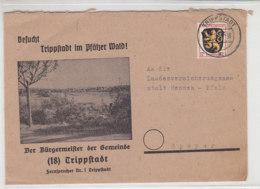 Dekorativer Brief Aus TRIPPSTADT 18.2.46 - Zona Francesa