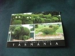 SIEPI A FORMA ANIMALE RAILTON TOWN OF TOPIARY TASMANIA AUSTRALIA - Australia