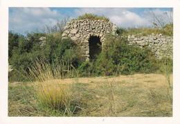34 Villeveyrac, La Baraque Du Campanier, (Les Clapasses) - Autres Communes