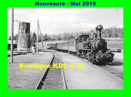 AL 567 - Train - Loco 030+030 T N° 403 En Gare - SAINT-AGREVE - Ardèche - CFD Vivarais - Saint Agrève