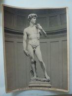 """Fotografia """"FIRENZE - R. GALLERIA ANTICA E MODERNA - Il David  ( Michelangiolo )""""  Edizioni Alinari Anni '30 - Luoghi"""