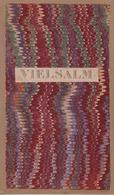 Vielsalm Grand Halleux Wanne Petit Halleux Frontière Avec La Prusse Vers 1900 - Cartes Géographiques
