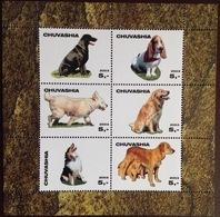 Chuvashia 2003 Dogs Minisheet MNH - Perros