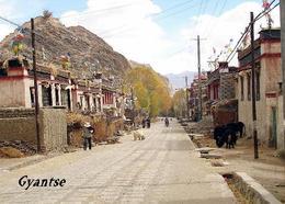 Tibet Gyantse Street View New Postcard - Tibet