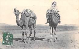 Algérie  CHAMELIER (camel Chameau Chameaux) - (Edition  ND 17)*PRIX FIXE - Unclassified