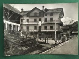 Cartolina Gruppo Escusrionistico Torinese - Soggiorno Alpino - 1928 - Non Classificati