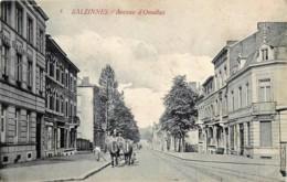 Belgique - Namur-Salzinnes - Avenue D'Omalius - Edit. Van Den Heuvel N° 5 - Namur