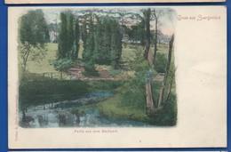 Gruss Aus  SAARGEMÜND   Partie Aus Dem Stadtpark - Sarreguemines