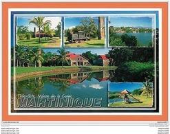 A163/451 Martinique - Multivues - France
