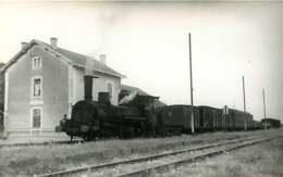 050819 - PHOTO TRANSPORT TRAIN CHEMIN DE FER - Loco Gare à Situer - Gares - Avec Trains