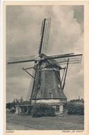 CPA - Pays-Bas - Elspeet - Molen De Hoop - Netherlands