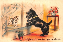 """¤¤   -  Illustrateur """" Germaine BOURET """" - Carte Moderne Retirée - Chiens   -  ¤¤ - Bouret, Germaine"""