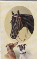 AS74 Animals - Horses - Horse And 2 Dogs, Artist Signed C. Reichart - Chevaux