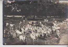 Fotografia Originale Guerra 1914 1918 Militari A Cavallo Cm 12 X 18 - War, Military
