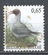 Belgium 2004. Scott #1976 (U) Bird: Mouette Rieuse - België