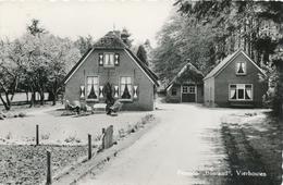CPSM - Pays-Bas - Pension Bostrand - Vierhouten - Netherlands