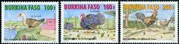 BURKINA FASO Oiseaux De La Basse-cour 3v 2011 Neuf ** MNH - Burkina Faso (1984-...)