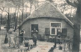 CPA - Pays-Bas - Veluwsche Hut - Netherlands