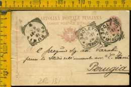 Regno Cartolina Intero Postale Spoleto Perugia - Storia Postale