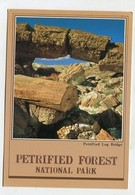 USA - AK 358744 Arizona - Petrified Lodge Bridge In Blue Mesa - Mesa