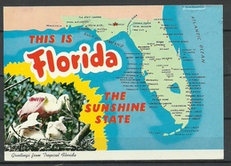 USA FLORIDA Sent 1999 From Germany With Stamp - Etats-Unis