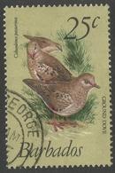Barbados. 1979 Birds. 25c Used. SG 629 - Barbades (1966-...)