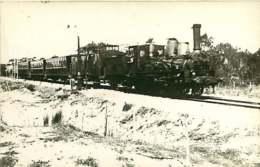 050819A - PHOTO TRANSPORT TRAIN CHEMIN DE FER - Express De LA BAULE En 1907 - Estaciones Con Trenes