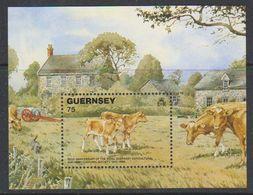 Guernsey 1992 Cattle M/s ** Mnh (44034) - Guernsey